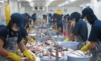 Standard Charter: Ekonomi Viet Nam mencapai pertumbuhan paling cepat di  ASEAN