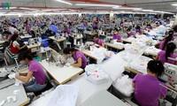 """Pada September nanti akan berlangsung """"Konferensi perdagangan online tentang produk tekstil Viet Nam-Belanda"""