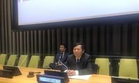 Diplomatik dengan Keadilan, Faktor Penting dalam Keberhasilan Viet Nam pada Bulan Ketua DK PBB
