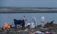 Jepang Berikan Bantuan Darurat kepada India dan Myanmar