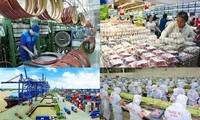 Program Aksi Pemerintah Melaksanakan Repelita 2021-2025