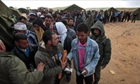 Egypt evacuates citizens stuck in Libya-Tunisia border