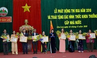 Lanzan movimiento de emulación patriótica en la altiplanicie de Gia Lai