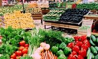 Vietnam registra aumento de exportaciones de frutas y verduras en lo que va de año