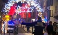 Francia aniquiló al autor del atentado en Estrasburgo