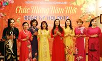 Prosiguen actividades de los vietnamitas en ultramar como preámbulo del Tet 2019