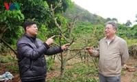 Pham Han Hanh, científico al servicio de la agricultura