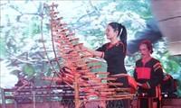 Numerosas actividades con motivo del séptimo festival del Café de Buon Ma Thuot