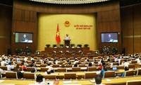 Diputados vietnamitas analizan leyes de Funcionarios y Empleados y de Trabajadores Públicos