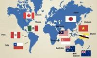 Vietnam aprecia el CPTPP en el reforzamiento de relaciones con México