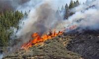 España controla incendio en la isla de Gran Canaria