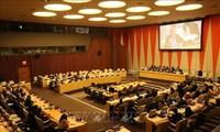 Reconocen países el mes presidencial de Vietnam en el Consejo de Seguridad