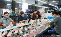 Vietnam y Estados Unidos por promover intercambio comercial en sector de calzado