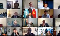 Vietnam determinado a cooperar con Consejo de Seguridad en asuntos de los Grandes Lagos de África