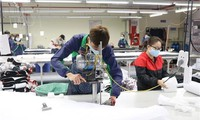 Vietnam por impulsar exportaciones a los Países Bajos