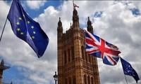 La Unión Europea y el Reino Unido efectúan la séptima ronda negociadora post-Brexit