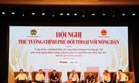 Vietnam presta atención a invertir en el desarrollo agrícola y rural, afirma el premier