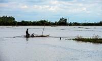Los agricultores de An Giang esperan la temporada de inundaciones