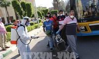 Egipto reafirma su disposición de apoyar al AfCFTA