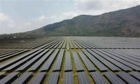 """Vietnam está experimentando la etapa """"boom de energía solar"""", apunta prensa alemana"""