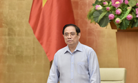 Creación de equipos especiales en respuesta al covid-19 en Vietnam