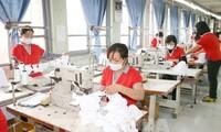 Fuerte impulso de las exportaciones desde Vietnam hacia España