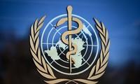 Coronavirus : l'OMS arrête les essais sur l'hydroxychloroquine