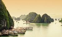 ベトナム共産党と国土を歌う特集