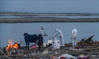 新型コロナウイルス、世界の感染者1億6060万人超 死者347.5万人