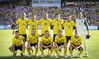 サッカー欧州選手権:イングランド分ける、スウェーデン勝利