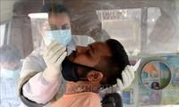 インドで確認の変異ウイルスは最大の脅威 米政府 首席医療顧問