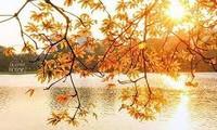 秋にちなんだ不朽の名曲