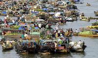Mendorong kuat pengembangan  sosial-ekonomi  di daerah dataran rendah  sungai Mekong.