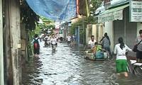 Vietnam memperkuat kerjasama internasional  untuk  menghadapi  perubahan iklim