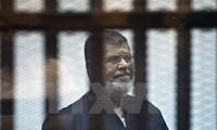 Mesir menjatuhkan hukuman penjara terhadap ratusan pendukung Presiden Mohamed Morsi