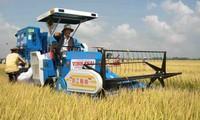 Memperkuat  mekanisme dan sumber daya untuk pengembangan pertanian dan pedesaan