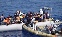 Mesir menangkap puluhan migran yang berupaya menerobos perbatasan pergi ke Italia