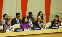 Vietnam menghadiri pertemuan tingkat tinggi PBB tentang masalah adaptasi dengan perubahan iklim