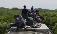 PBB berseru kepada komunitas internasional supaya berbagi tanggung jawab tentang kaum migran