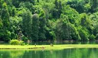 Taman Nasional Ba Be-Tempat wisata  yang atraktif di provinsi Bac Kan