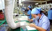 Vietnam mempertahankan surplus perdagangan  ke Kanada