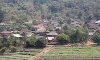 Mendapatkan pengalaman melalui paket-paket wisata komunitas di provinsi Lai Chau