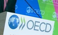 OECD berseru untuk mendorong  start-up  terhadap kaum pemuda Amerika Latin