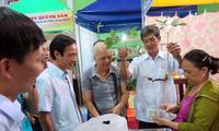 Pasaran ginseng Ngoc Linh untuk pertama kalinya dibuka di provinsi Quang Nam.