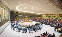 DK PBB  mempertimbangkan perintah gencatan senjata di Suriah