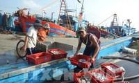 Vietnam berupaya melaksanakan  rekomendasi-rekomendasi Komisi Eropa  tentang eksploitasi perikanan