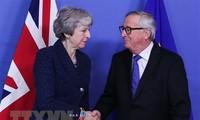 Masalah Brexit:  Inggris tidak sempat mencapai permufakatan  lanjutan perdagangan dengan para mitra