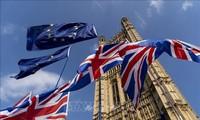 Masalah Brexit: banyak legislator Partai Konservatif memprotes keputusan memperpanjang  batas waktu Brexit yang diajukan oleh PM Theresa May