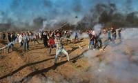 Yordania  menegaskan pendirian tentang  solusi dua Negara Israel –Palestina.