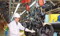 ADB: Ekonomi Viet Nam  tumbuh paling cepat di Asia Tenggara pada tahun 2019